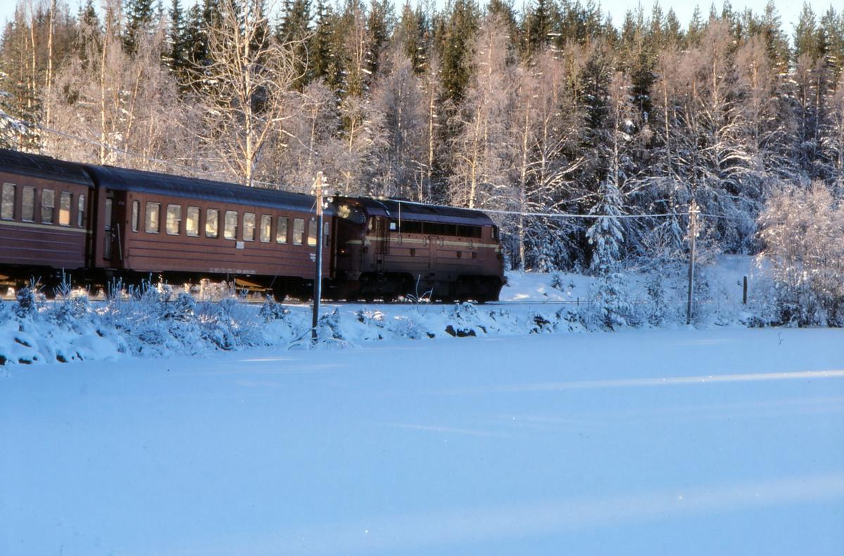 Tog til Fagernes ved Trevatn.