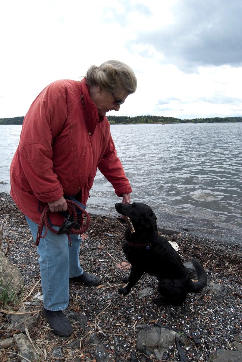 Hunden Chico på tur leker med pinne med sin eier.