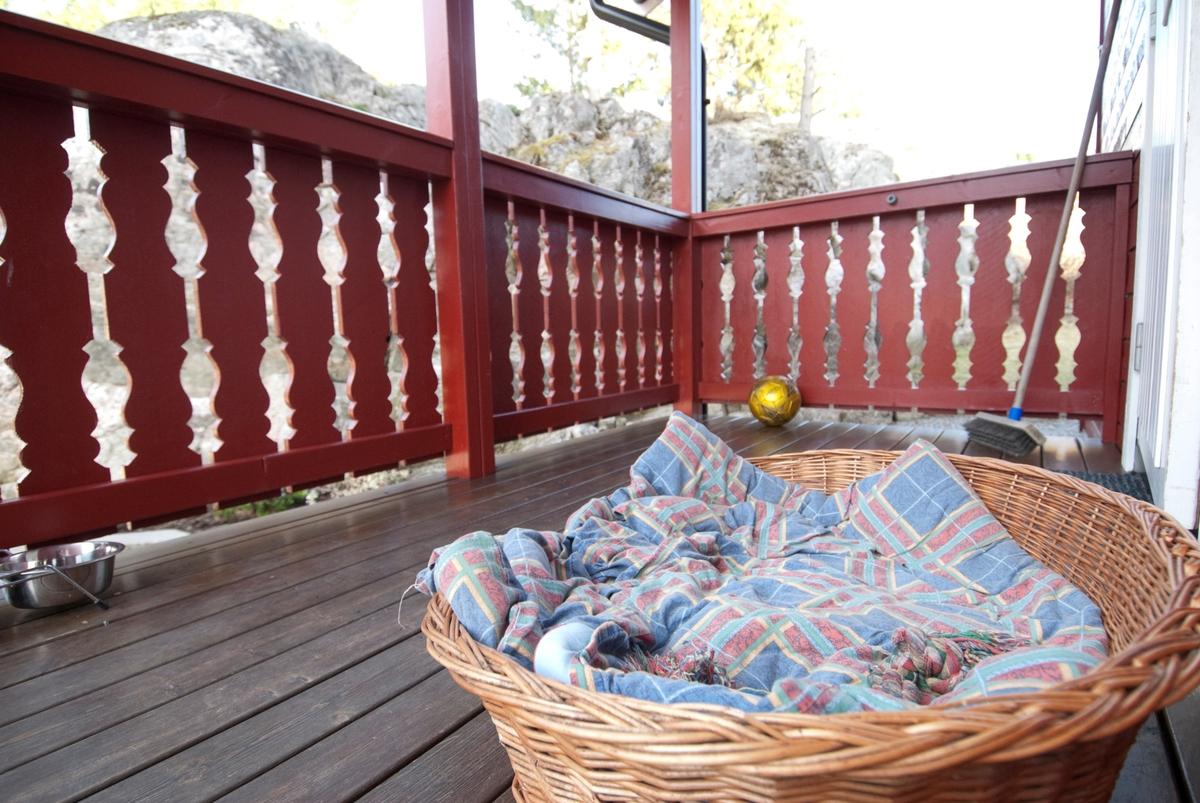 Hjemme hos hunden Pedro. Hundeseng og hundeleke på verandaen foran hjemmet.