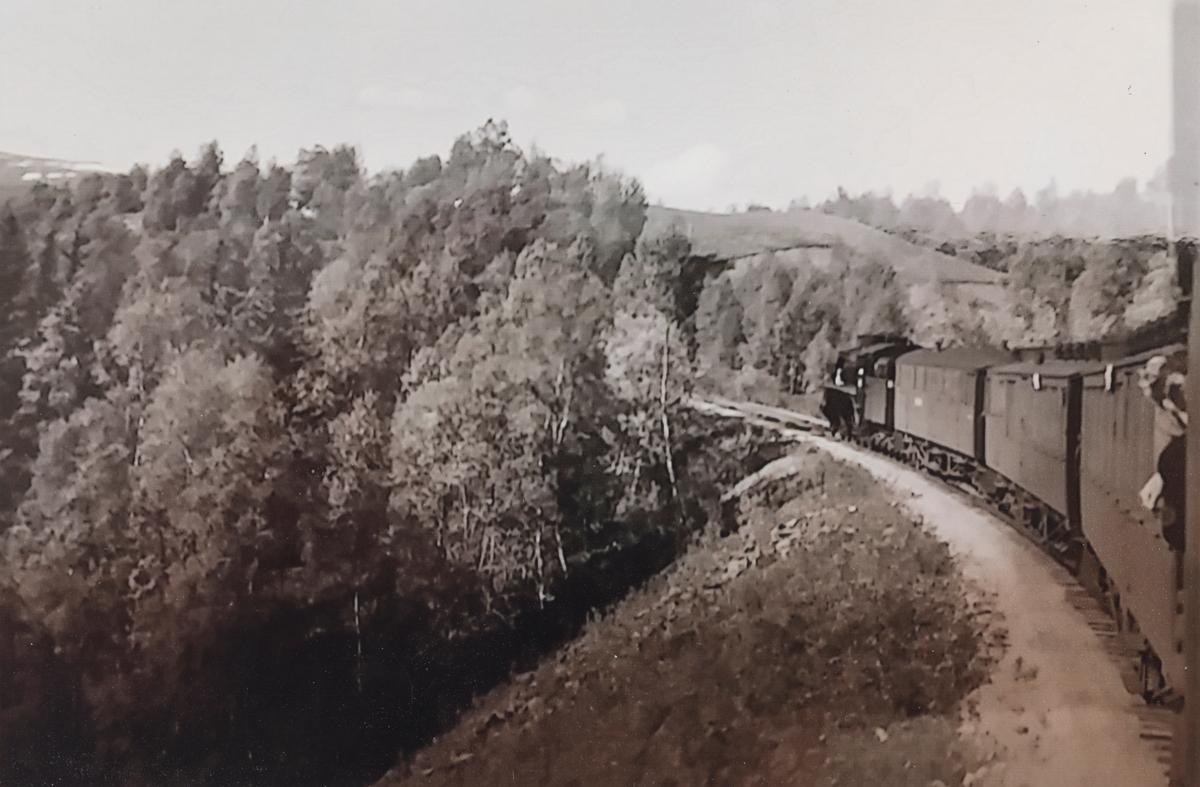 Dagtoget fra Oslo Ø til Trondheim over Røros, tog 301, ved Ryen mellom Rugldalen og Reitan stasjoner.