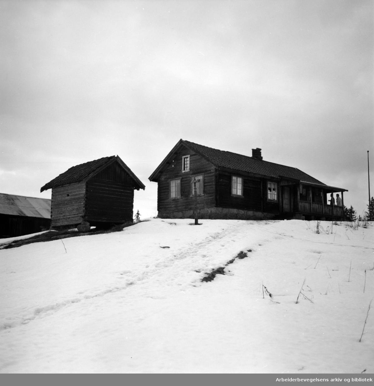 Nordmarka: Sinober i Lillomarka, turisthytte og serveringssted. Desember 1954