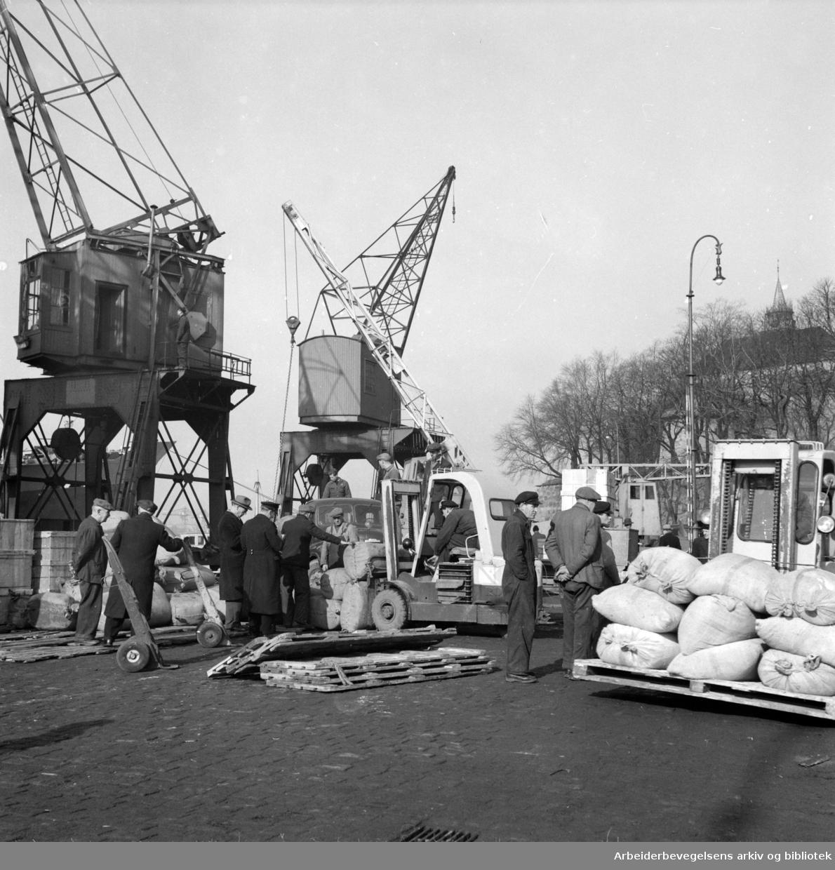 Havna. Bryggearbeidere, lasting og lossing. November1956