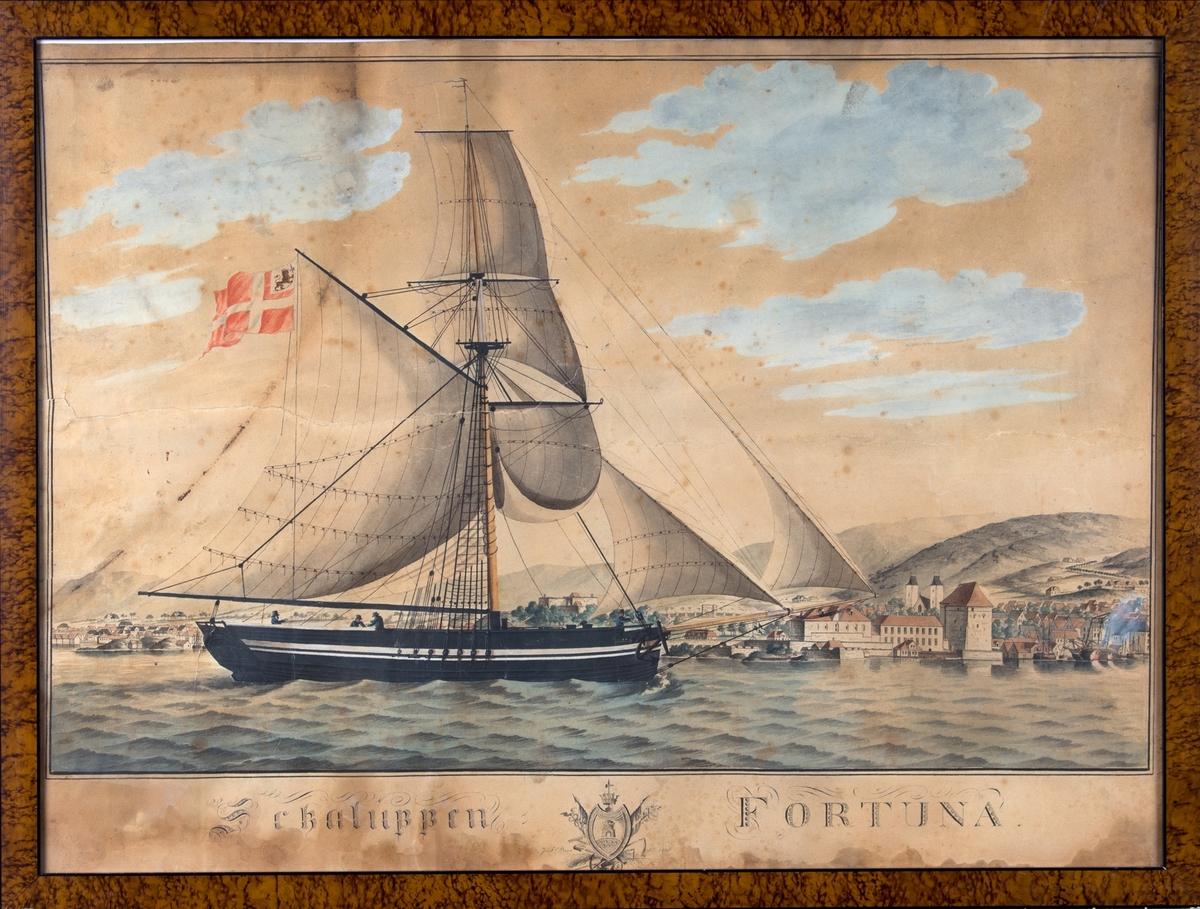 Skipsportrett av slupp FORTUNA med full seilføring på vei inn Bergens Våg, med den norske løve i flagget.