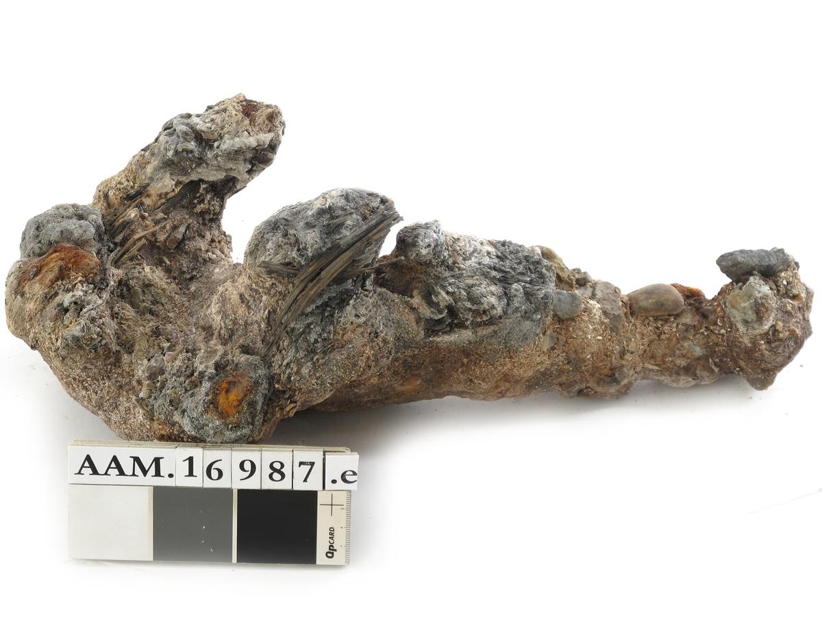 Korrosjonklump e)  Korrosjonsklump omkring et stykke jern. Består av jern, rust, stein, sand og rester av treverk.