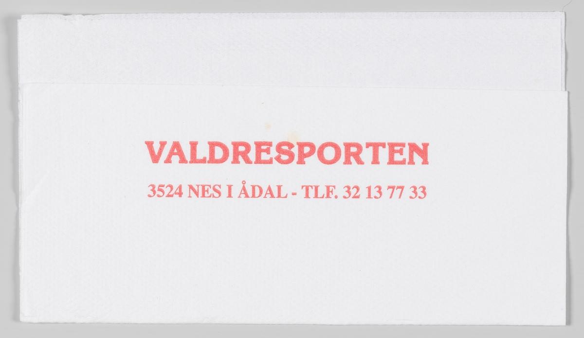 En reklametekst for Valdresporten kro og motell på Nes i Ådal.