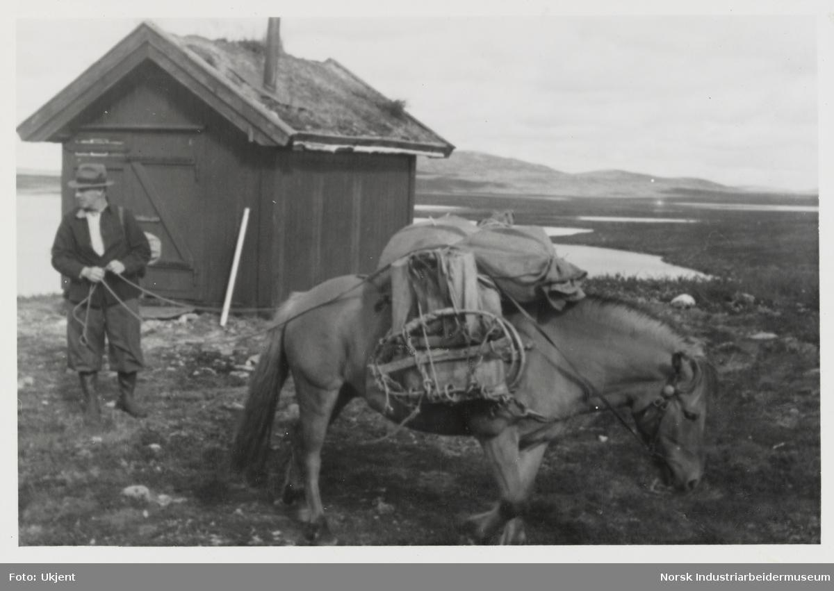Mann står ved liten hytte i fjellet og holder i tøyler til fjordhest lastet med bagasje og varer