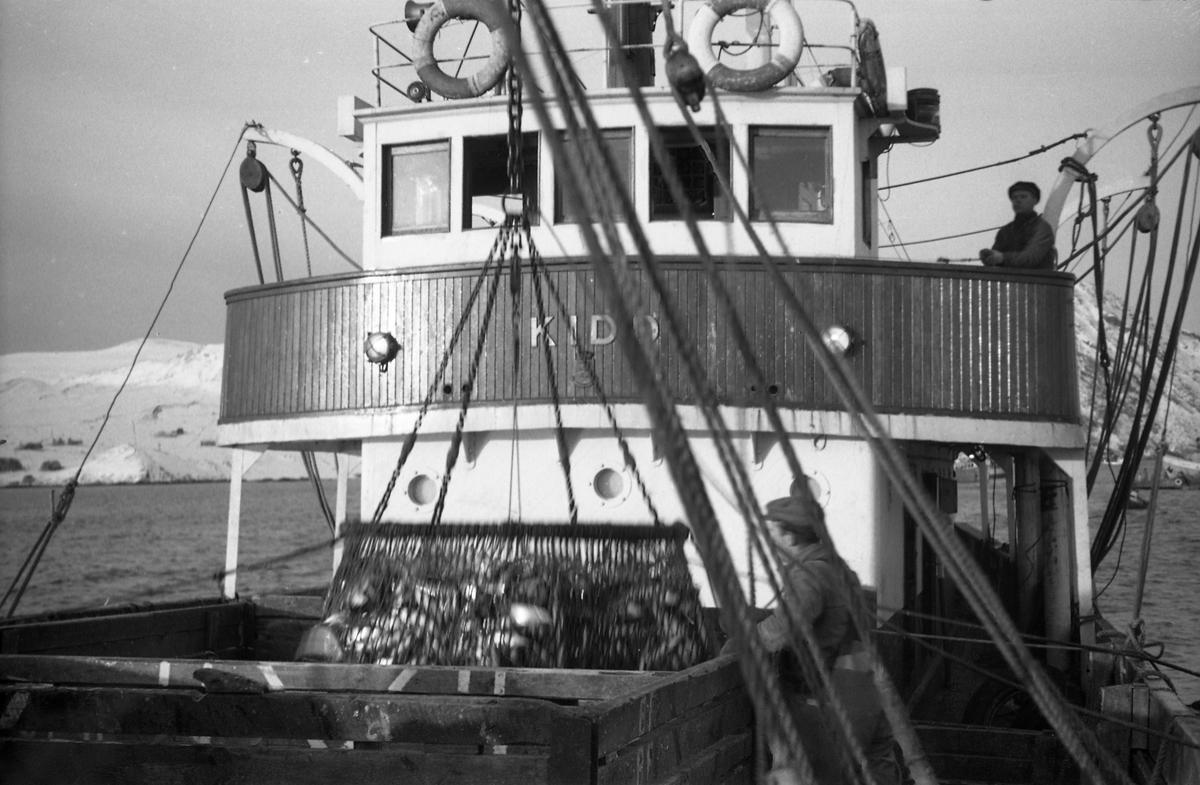 Serie på 18 avfotograferte bilder fra et fiskefelt, trolig tatt fra ei fiskeskøyte med navn Kidd. Bildeserien viser ulike faser i fangstprosessen.