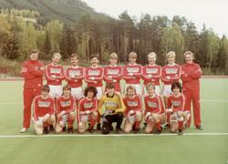 Gol  A lag i Fotball 2000