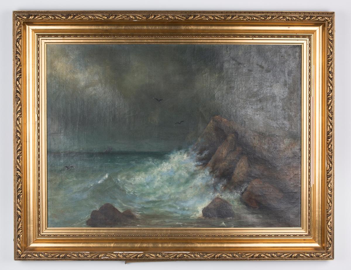 Landskap med bølger mot klipper