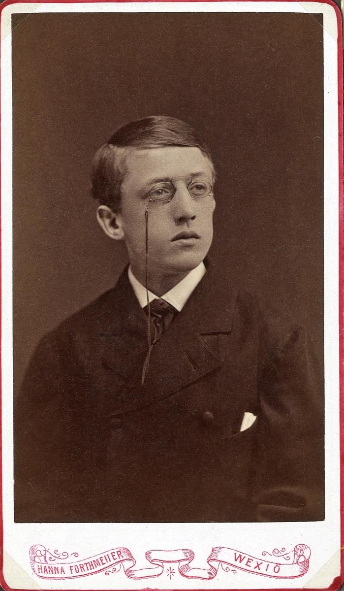 Porträttfoto av en ung man med pincené, klädd i mörk kavajkostym med slips. Bröstbild, halvprofil. Ateljéfoto.