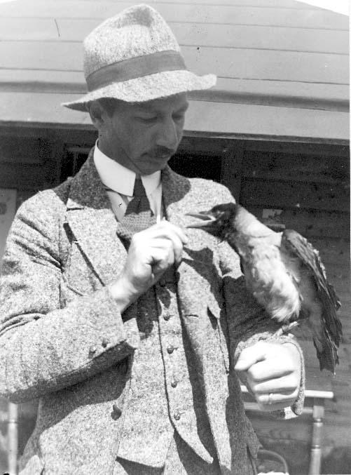 Porträtt av konstnären Anton Nilsson i tweedkostym och hatt i samma tyg. Han har en kaja (?) på armen.