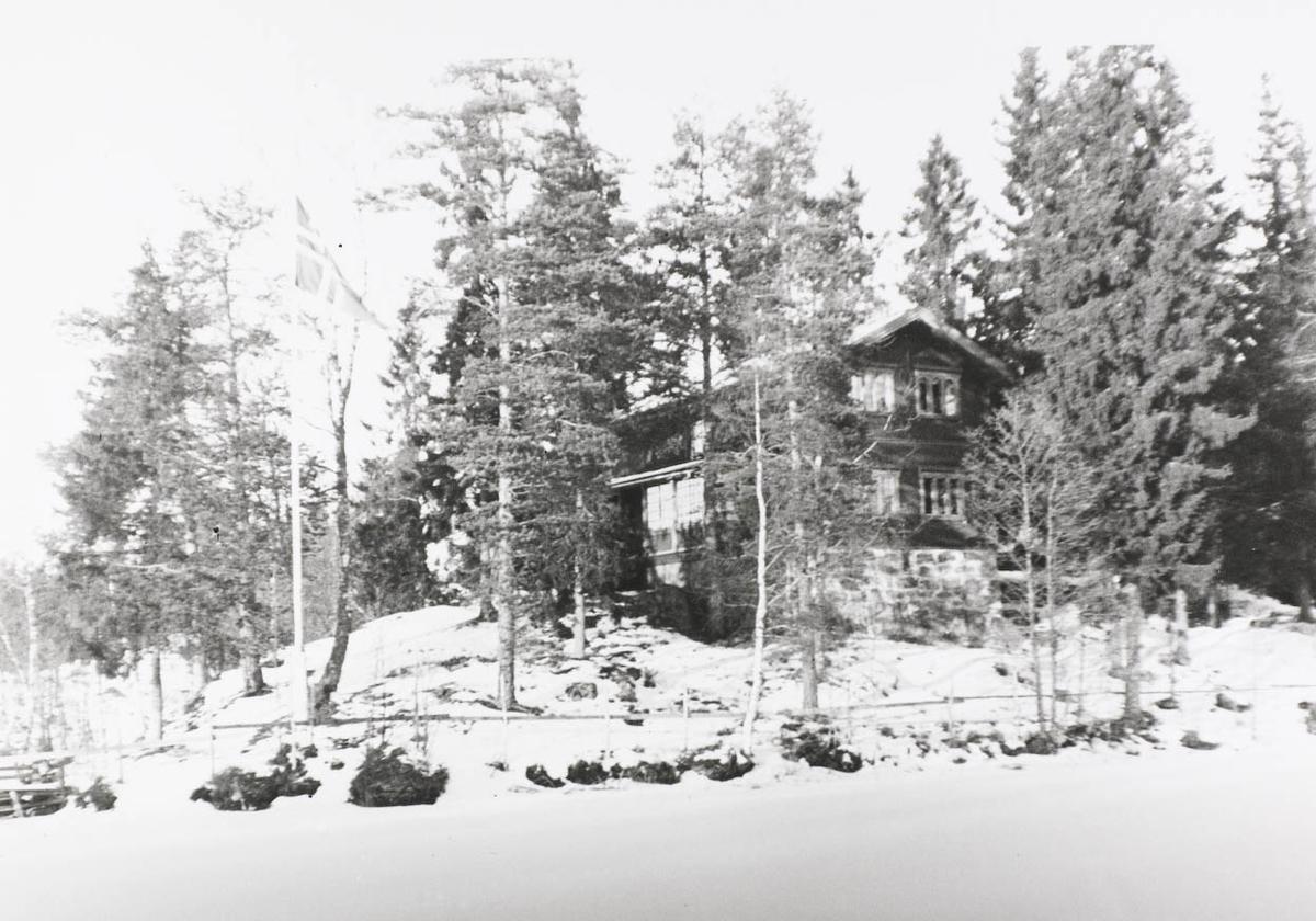 Hus, skog,sne