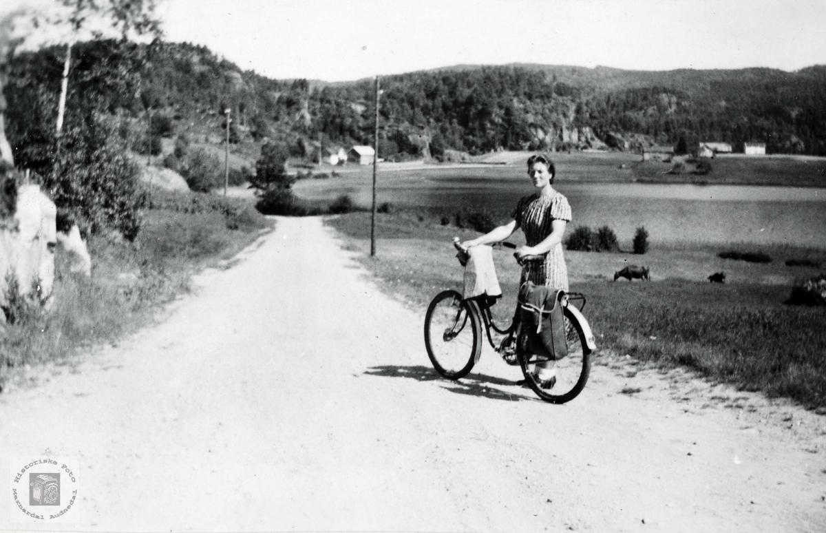 Sykkel i bruk til både butikk og fest.