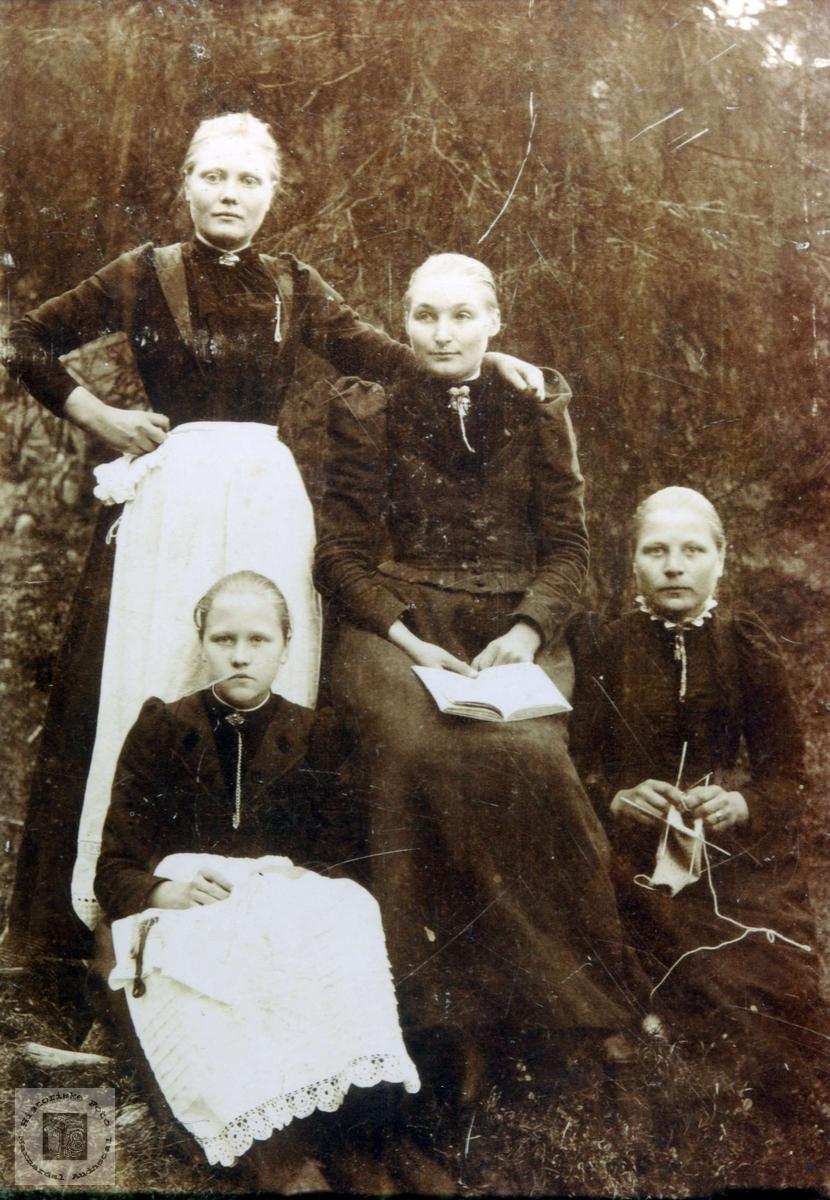 Flittige damer fra Konsmo. Audnedal.
