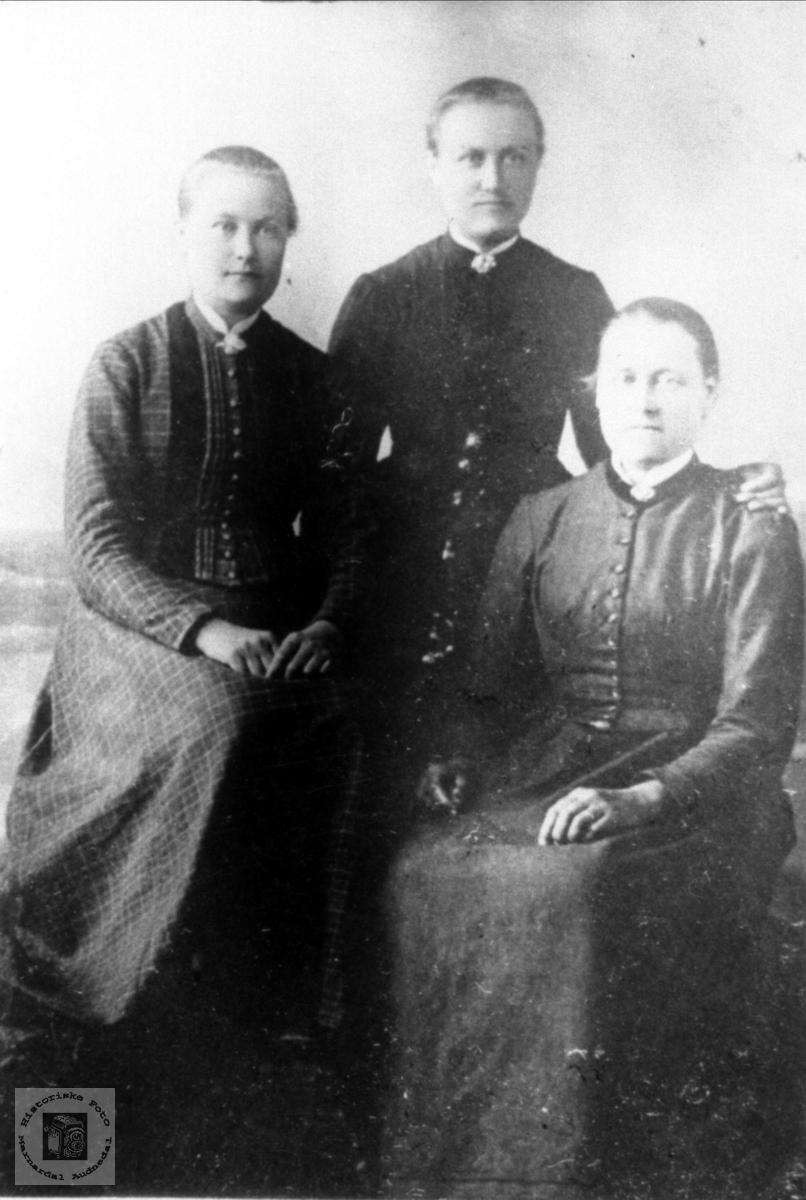 Portrett av jenter fra Røynesdal, Bjelland.