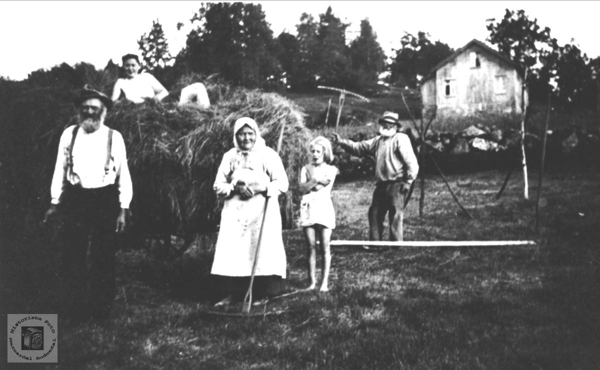 Høyonn på Sangesland, Laudal.
