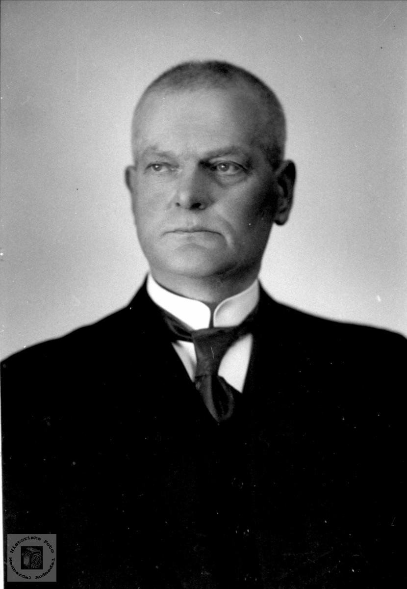 Portrett av Olav Holmegård, Øyslebø.
