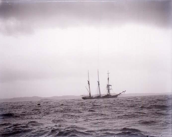 """Enligt text som medföljde bilden: """"Ryssfartyget."""""""