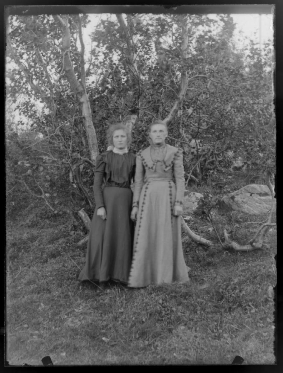 Johnsens og Brækkes døtre 1901