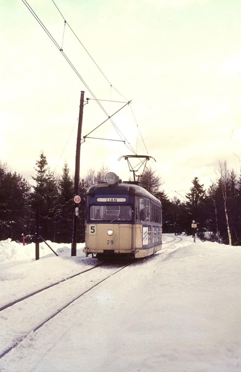 Trondheim Sporvei vogn 29 på vei mot Lian.