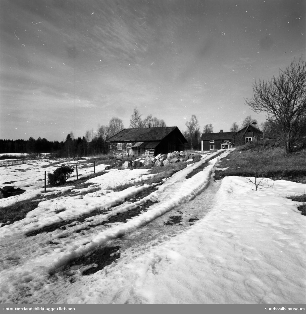 En gammal fallfärdig gård med omgivningar i Galtström.