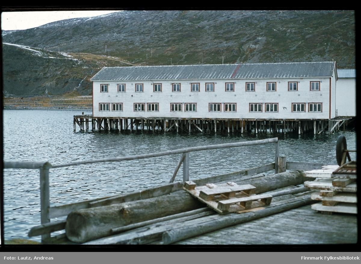 Kongsfjord i 1975. Kaia.