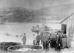 Bildet er tatt fra Storholmen, av Haabet hvalfangststasjon i
