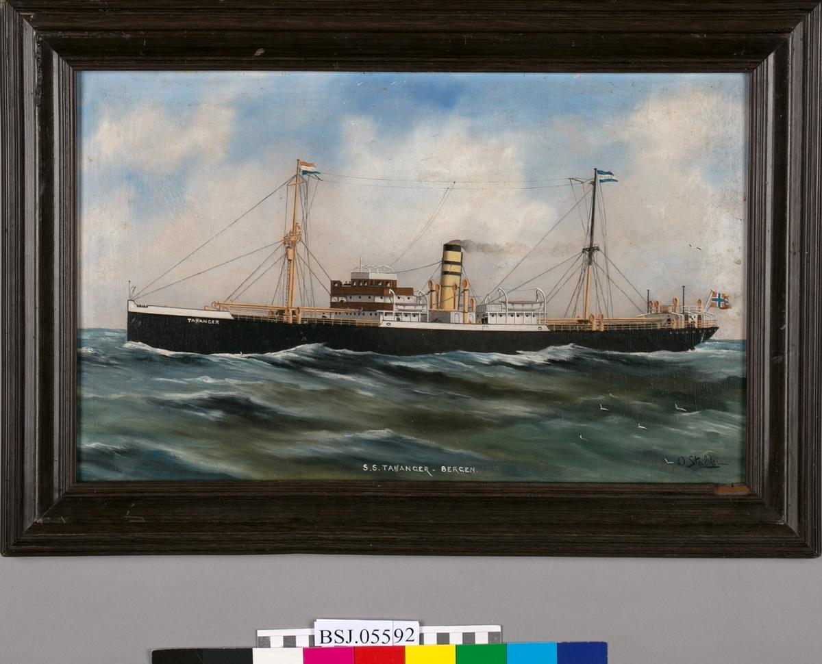Skipsportrett av DS TANANGER på åpent hav. Lave bølger med måker, blå himmel med hvite skyer. Skipet har to master. I framre vimpel nederlansk flagg, i bakre mast rederiflagget til Westfal-Larsen.