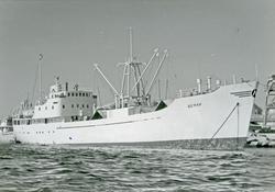 "Fryseriskipet M/S ""Bemar"" fra rederiet Marthinussen Fryseanl"