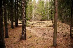 Hovinsholmen, Helgøya, Hedmark. Inne på holmen ligger det en