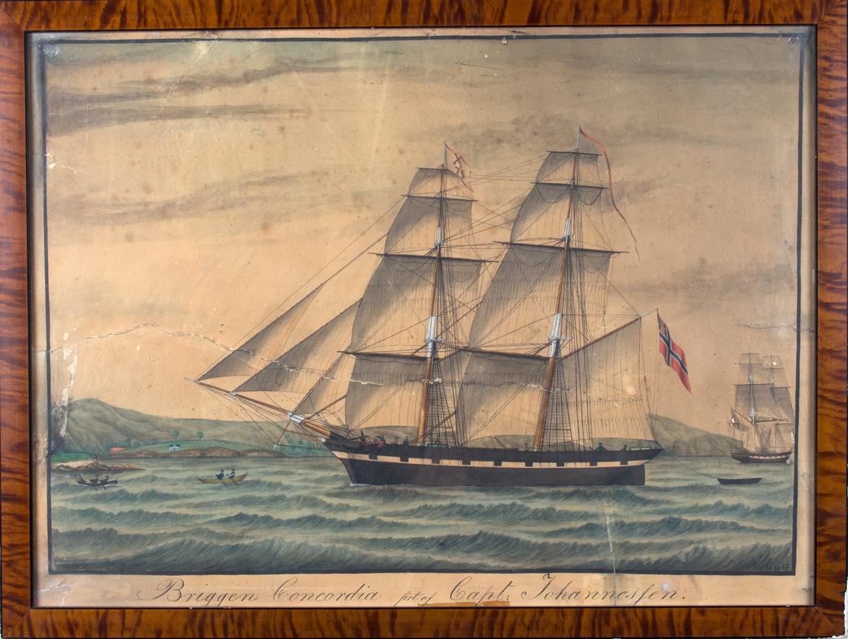 Skipsportrett av brigg CONCORDIA for fulle seil utenfor norsk kystlandskap. Ser unionsflagg i mesanmasten samt vimpel med kjenningsmerke X73 i fortoppen. Har malte kanonporter langs skutesiden. Forut for skipet to robåter, og til høyre i motivet en brigg sett fra akter.