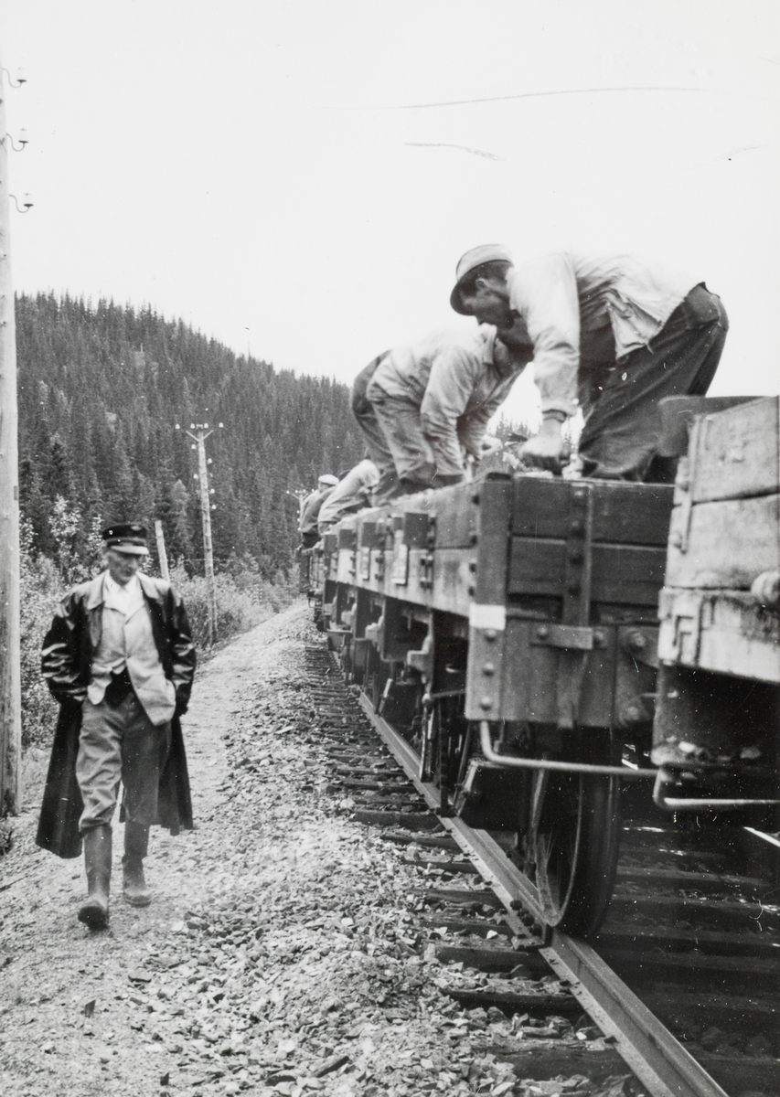 Banemesteren inspiserer at arbeidet med grusing av sporet blir riktig utført. Grustog på Nordlandsbanen trukket av damplokomotiv type 63a nr. 2343. Grusen er hentet fra Spølrem grustak mellom Laksfors og Eiterstraum stasjoner på Nordlandsbanen.