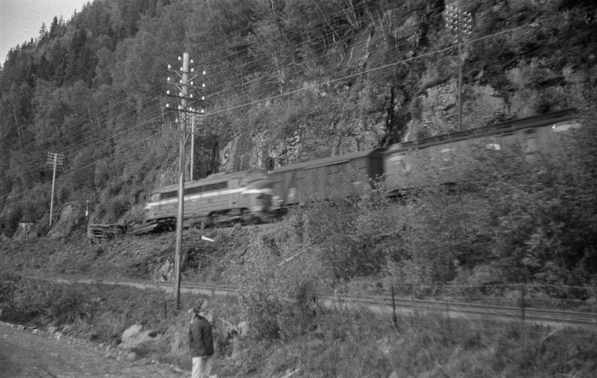 Dagtoget fra Trondheim til Lønsdal ved Langstein. Toget trekkes av diesellokomotiv type Di 3.