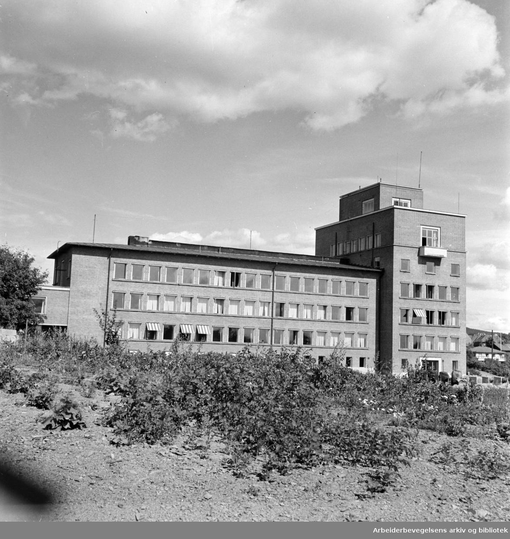 Meteorologisk institutt på Blindern. 1948.