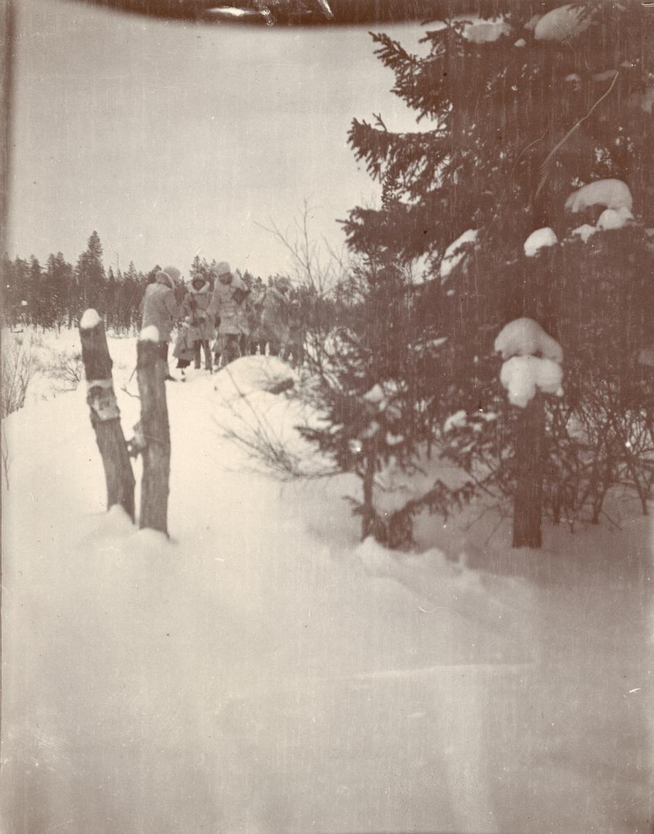 Officerare från Smålands husarregemente K 4 på skidor, vinterövning i Norrbotten omkring 1910.