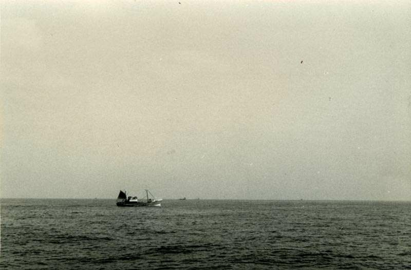 Fiskebåt i fart