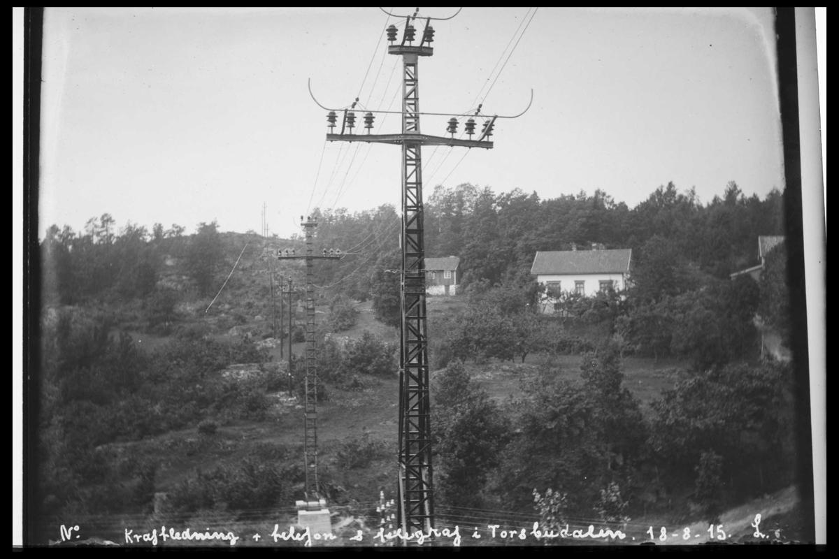 Arendal Fossekompani i begynnelsen av 1900-tallet CD merket 0565, Bilde: 88 Sted: Bøylefoss høyspentlinjer Beskrivelse: Torsbudalen