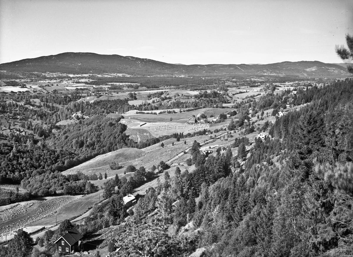 Utsikt mot Mistberget og Dalum gård fra Skakkland eller Wergelandsutsikten.