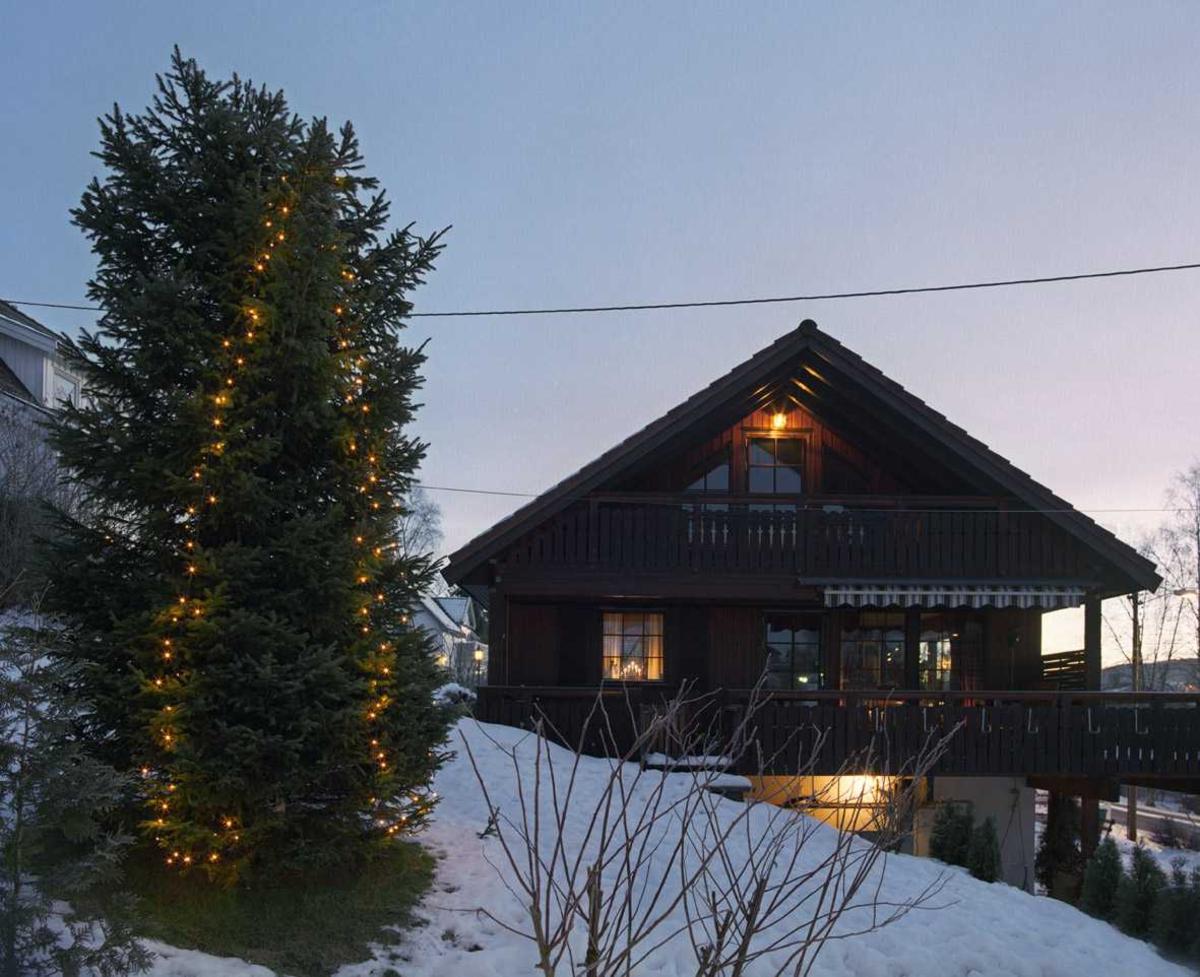 Julebelysning  Hvit julebelysning i lenke på gran ved enebolig