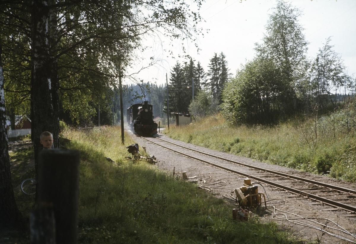 Godstog på Skreiabanen trukket av damplok 27a 296.