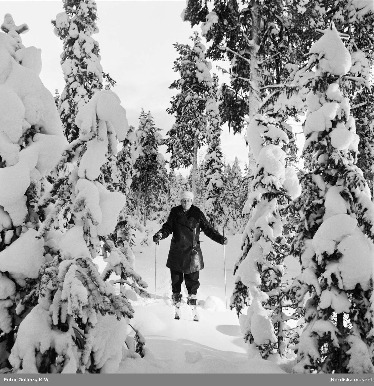 """Barnsbörd, barnmorska. """"I bister kyla genom milsvida skogar, där granarna tynges ned av väldiga snösjok, får lappmarksbarnmorskan spåra sig fram på skidor""""."""