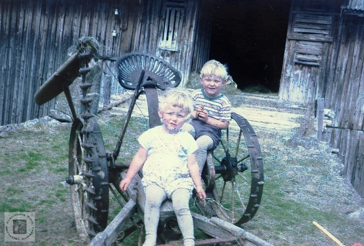 Barna på Øvre Ågedal inspiserer hesteslåmaskinen, Grindheim senere Audnedal.