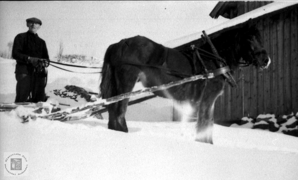 John Tisland og hest. Krona på Tisland i Laudal.