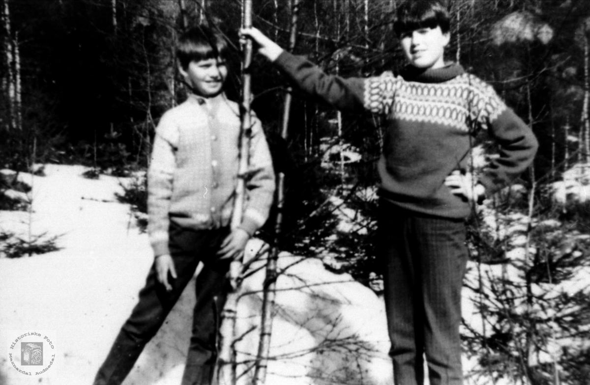 Portrett av brødrene Jan Ivar og Dag Øystein Bjørnhom, Laudal.