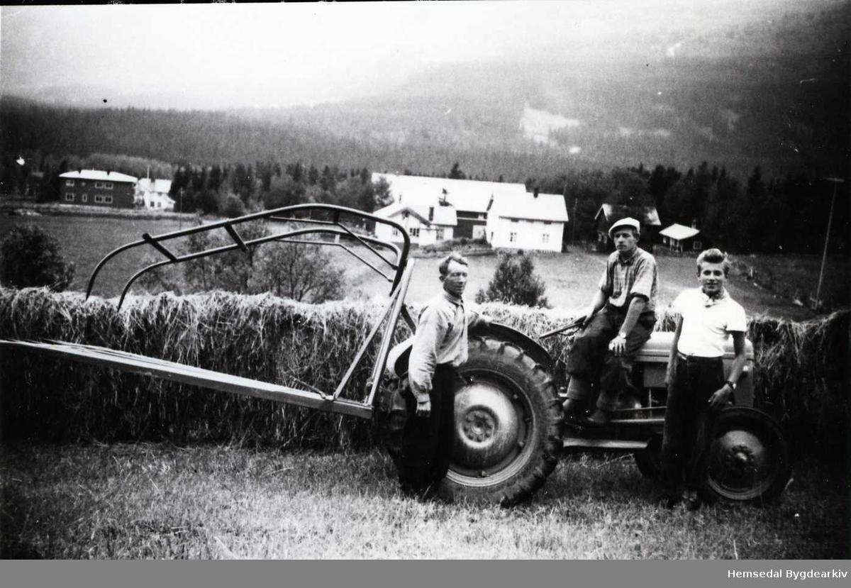 Fôrkøyring på Nedre Trøym, 67.7, sumaren 1951 eller 1952. Frå venstre: Jeger Trøym, Knut Trøym og Per Erik Sæhle. Dette var den fyrste Ferguson-traktoren i bygda. Det var også den fyrste traktoren med hydraulisk lyft, såleis også den fyrste med høysvans. Tindane var laga av tremateriale med metallspyd i endane. Traktoren kjøpte Jeger Trøym hausten 1948. Kjøpesummen var kr.8100,-. Rett nednfor ser ein gardtunet på Nedre Trøym,67.7. I bakgrunnen til venstre ser ein Trøym skule som vart bygd i 1938.