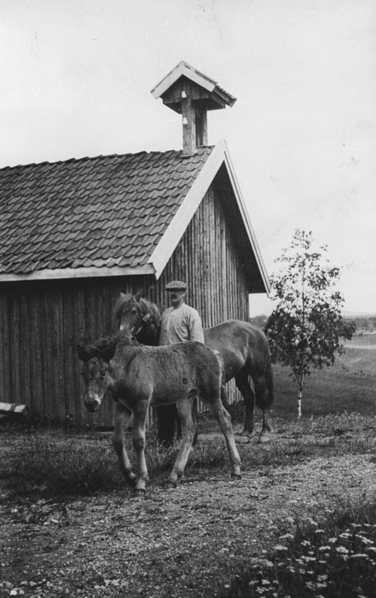 To hester og en mann foran et skjul med klokketårn.