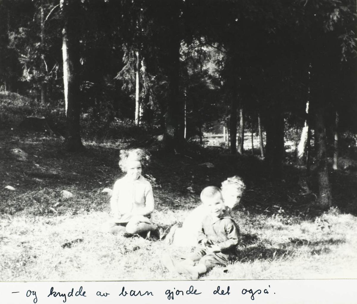 Tre små barn sittende i skogen.
