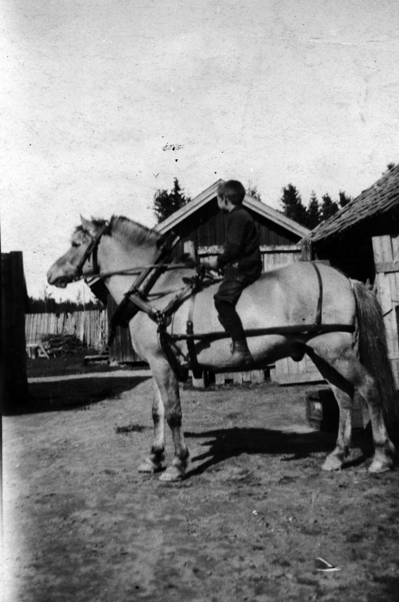 Gutt til hest i bakgården til hotel Køgler/Kjøpm. Sæter.