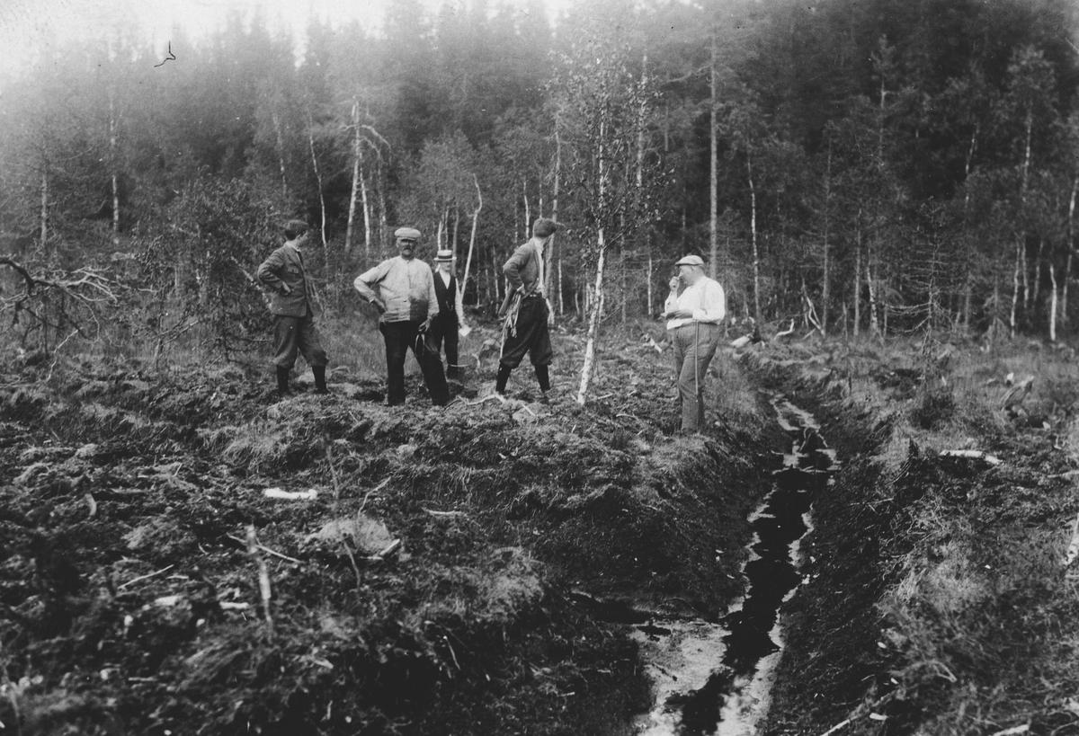 Skogsgrøfting