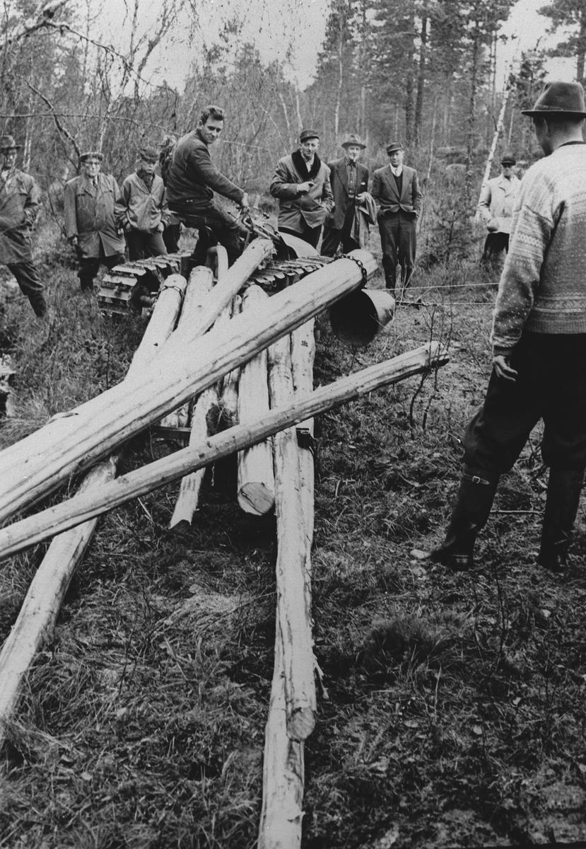 Skogbruk. Demonstrasjon av redskap.